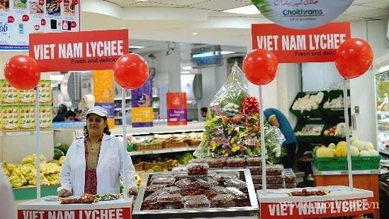 Hô Chi Minh-Ville resserre ses liens avec le Moyen-Orient
