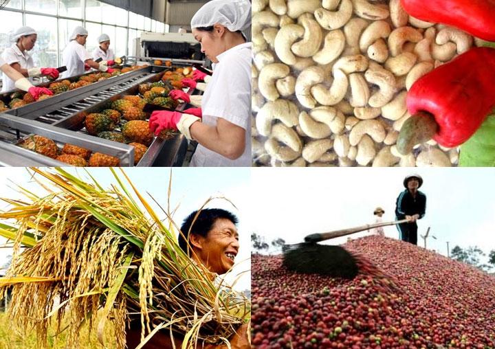 Les exportations agricoles du Vietnam se classent 15ème dans le monde