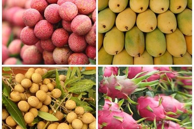 Fruits et légumes: 3,5 milliards de dollars d'exportations en 11 mois