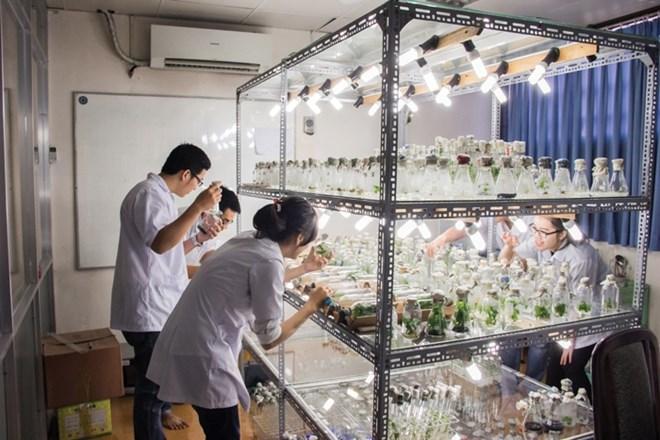 Biologie - Biotechnologie: Promotion de la coopération entreprises-université