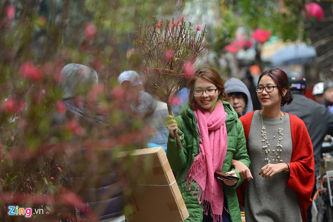 Marché aux fleurs de Hang Luoc ou l'âme du printemps dans la vieille ville