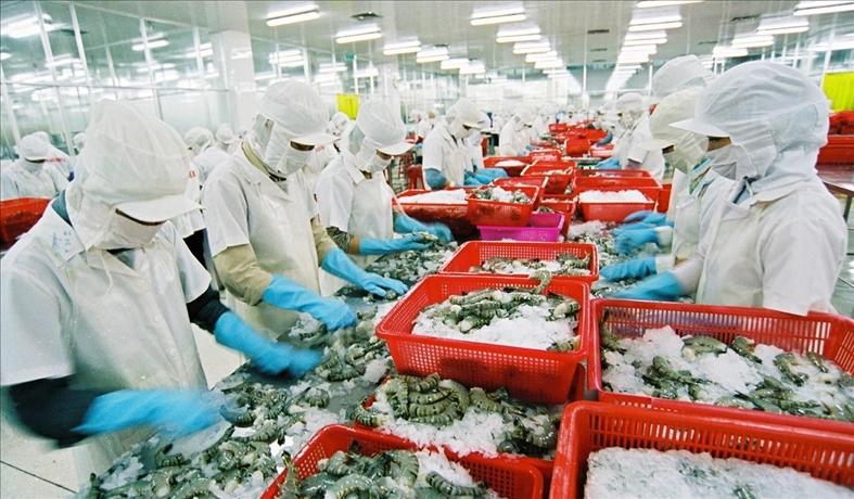 2019: le secteur des produits aquatiques cible 10 milliards d'USD d'exportations