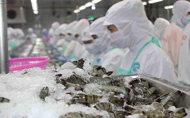 La filière crevetticole vise un chiffre d'affaires à l'export de 500 millions de dollars en République de Corée