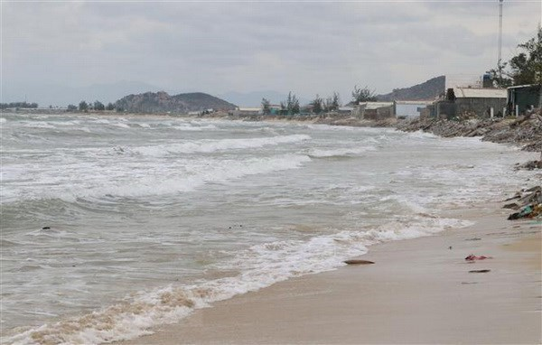 Le Vietnam profite des expériences internationales en matière de planification spatiale marine