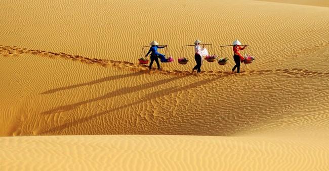 Pour un développement durable du tourisme à Binh Thuan