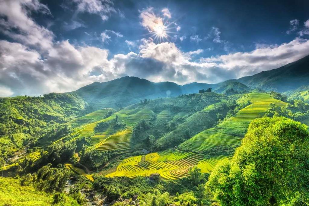 Sapa et Da Lat parmi les meilleures destinations de voyages de printemps en Asie