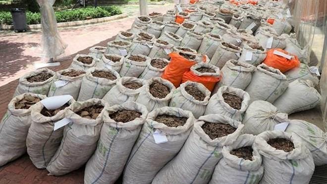 Singapour saisit près de 13 tonnes d