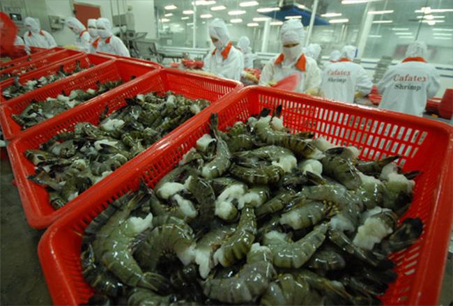 CPTPP: nombreuses opportunités d'exportation de crevettes vers le Canada