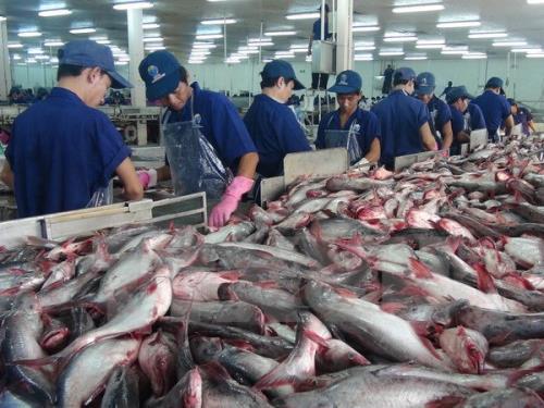 Des produits aquatiques vietnamiens profitent de la suppression chinoise des droits de douane