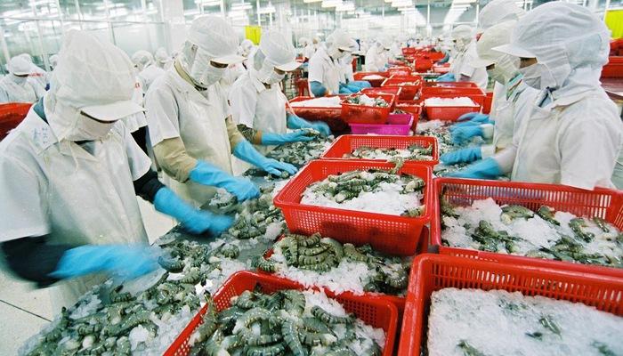 Exportations de crevettes au Japon: le Vietnam maintient sa position de leader