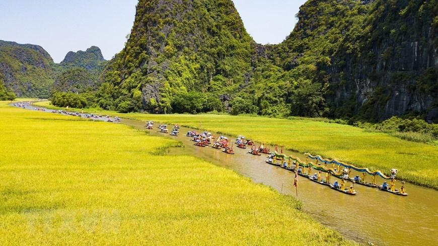 Tam Coc séduisant  à la saison du riz mûr