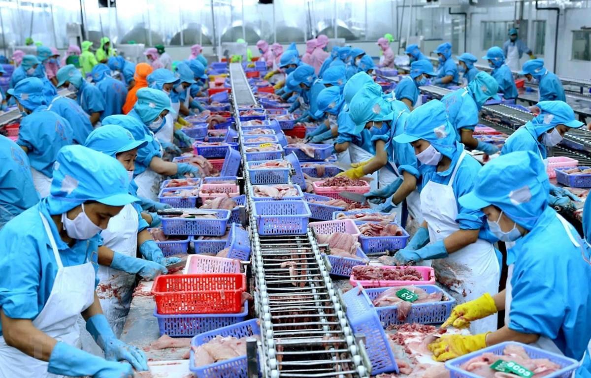 Le Moyen-Orient et l'Afrique, marchés à fort potentiel d'exportation pour les entreprises vietnamiennes