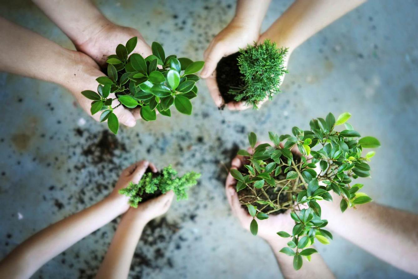 """""""Go green-Tourisme vert"""" pour l'environnement du tourisme"""