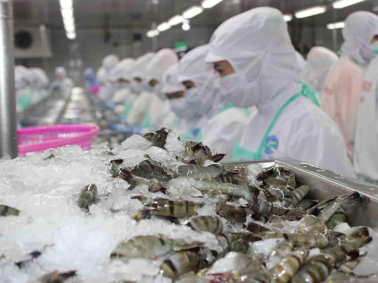 Crevettes vietnamiennes: Les États-Unis suppriment un droit antidumping