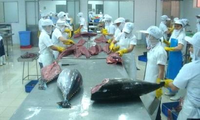 1er semestre: Bond des exportations de thon aux Etats-Unis