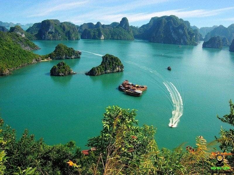 [Infographic] Les îles vietnamiennes préférées des touristes étrangers