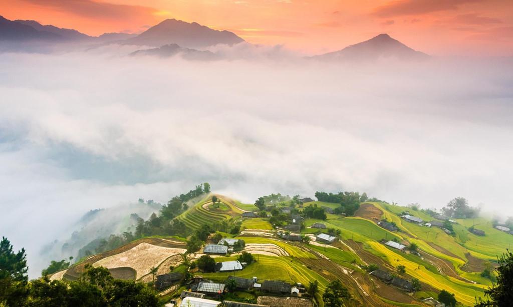 Des destinations idéales pour admirer les rizières dorées