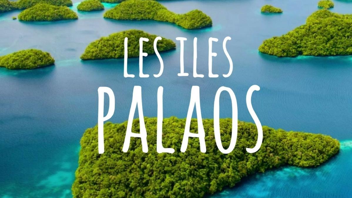 Coup de pouce à la coopération touristique Vietnam- Palaos