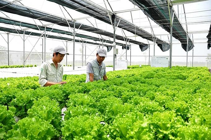 Les entreprises japonaises augmentent leurs investissements dans l