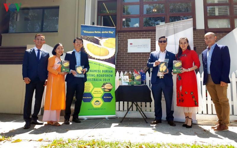 Le durian vietnamien conquiert le marché australien