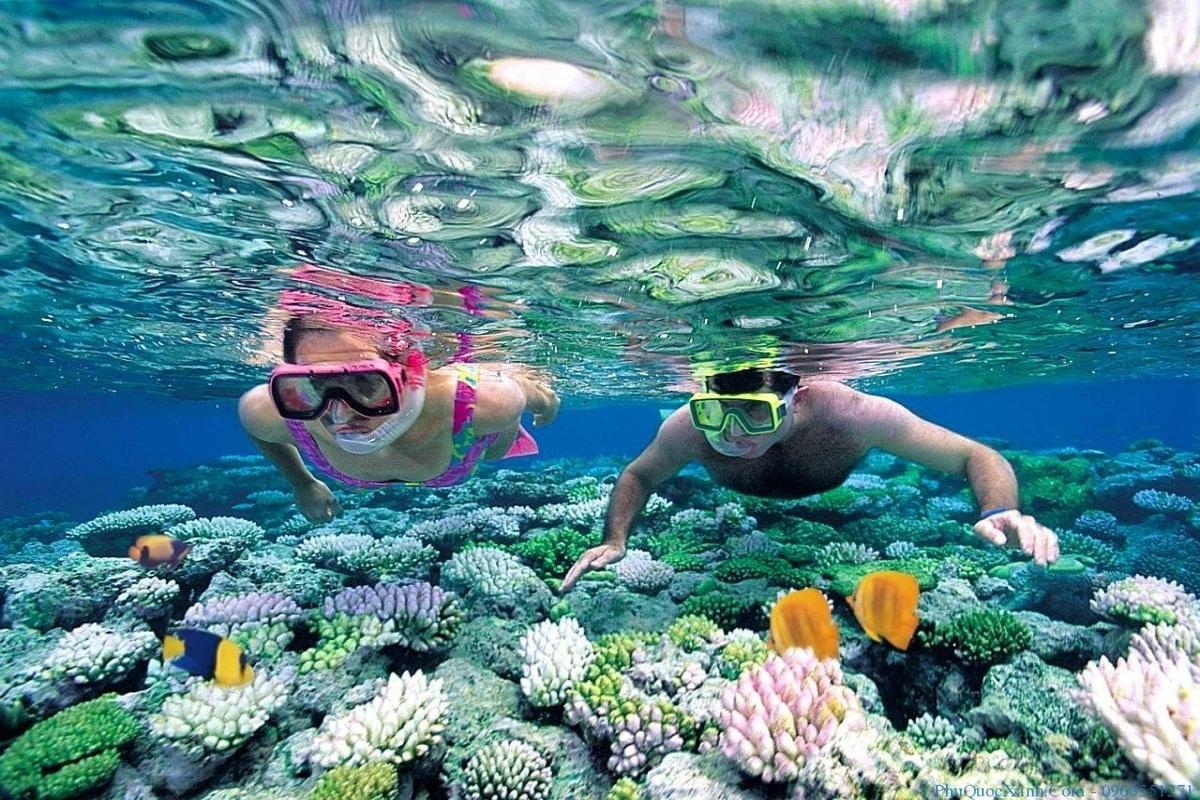 Plongée sous-marine: Khanh Hoa parmi les destinations idéales dans le monde
