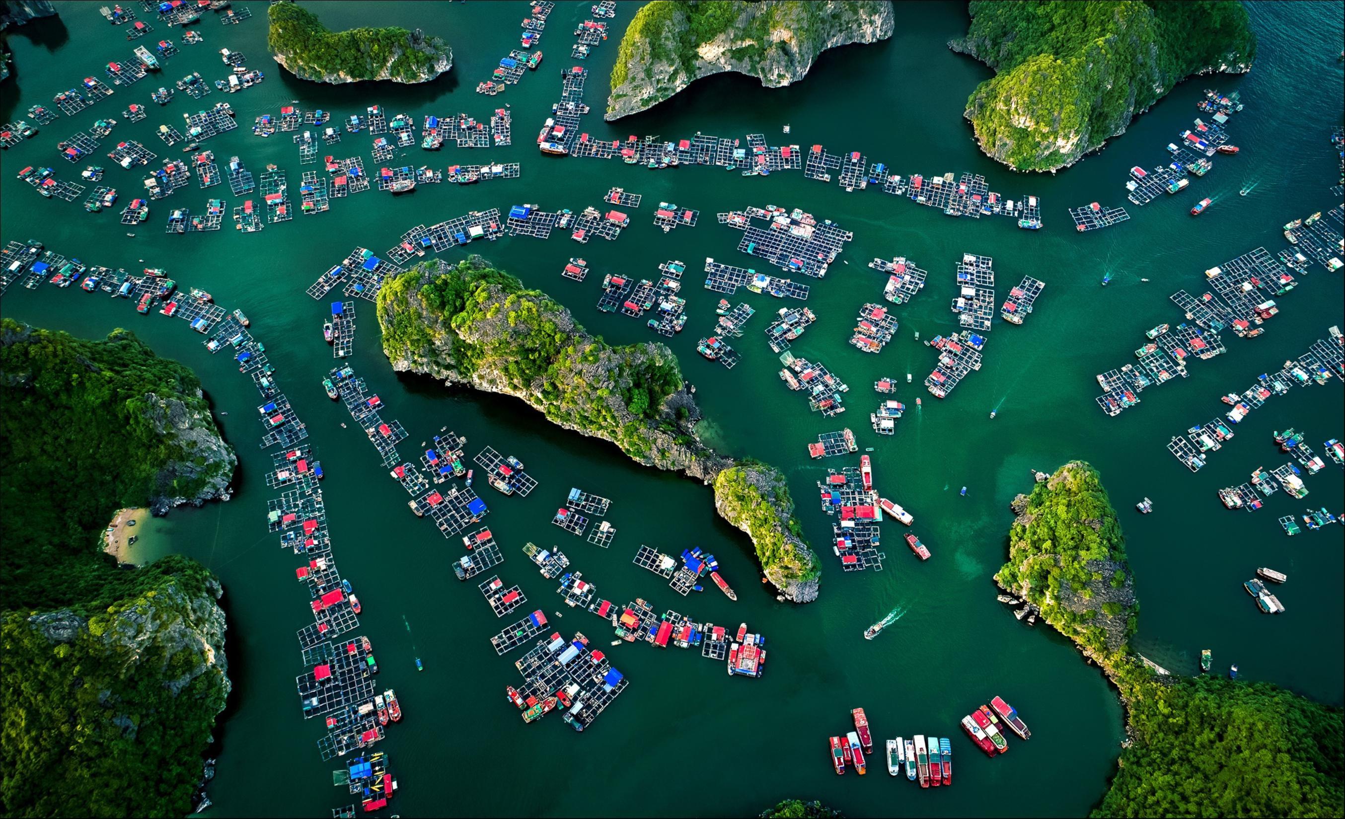 Le Vietnam parmi les premières destinations pour les tendances de voyage en 2020