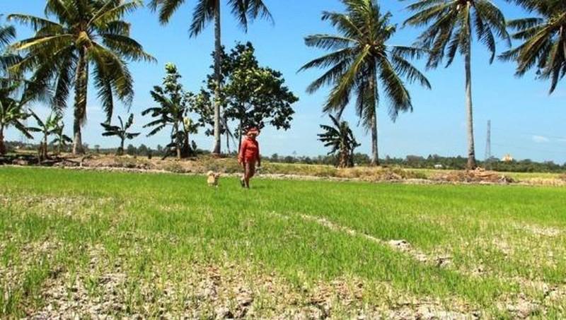 L'UE et la France soutiennent le Vietnam dans la résilience face au changement climatique
