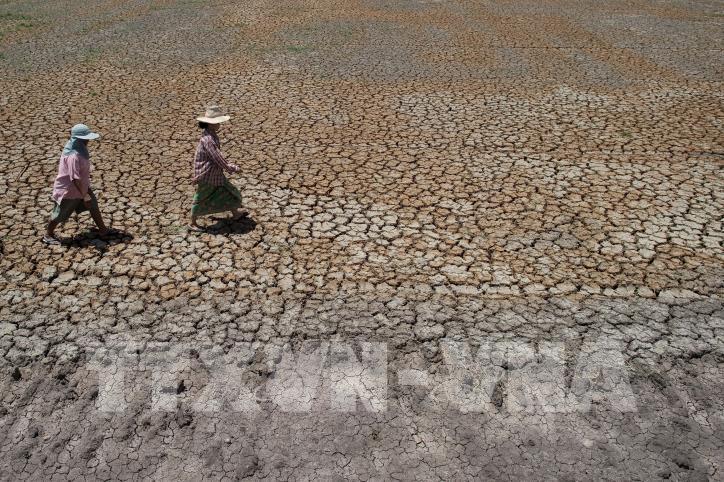 Thaïlande : une usine de dessalement d