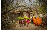 Découverte de la beauté du Vietnam via des clips sur la nature et les gens