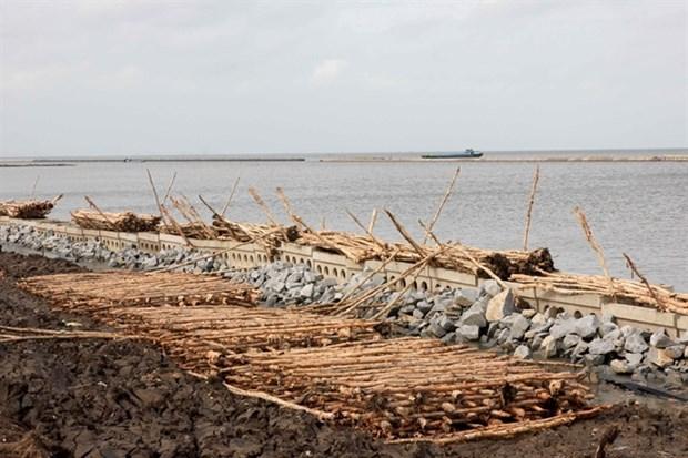 La province de Ca Mau travaille pour prévenir l