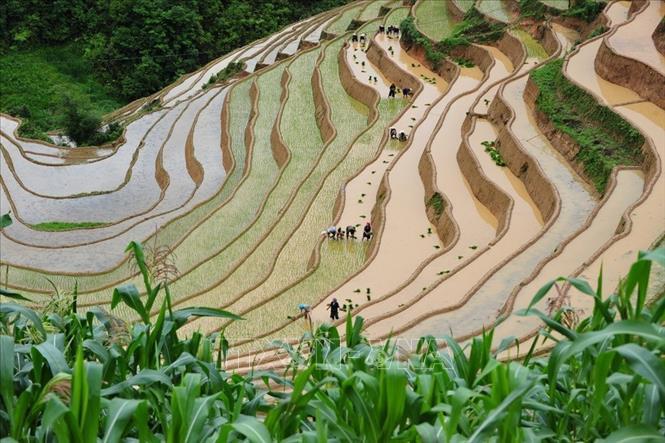 Yên Bai : Bientôt les activités touristiques de la Saison d'eau 2020
