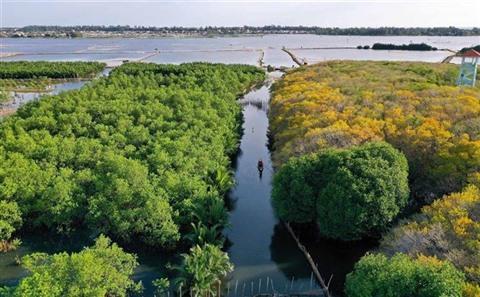 Vietnam, un des pays les plus riches en biodiversité