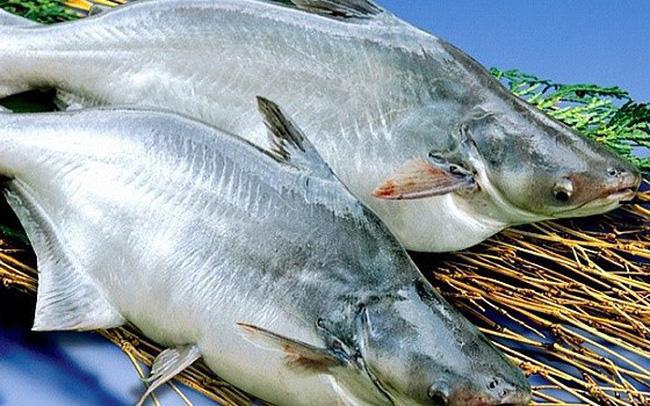 Forte baisse des exportations de poisson tra