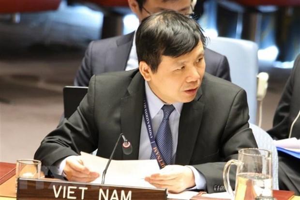 Le Vietnam préside une réunion du Groupe de travail sur les tribunaux internationaux