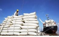 Forte croissance des exportations de riz en France en 9 mois