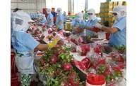 Augmenter les exportations des produits agricoles vers l