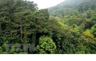Un projet pour stimuler la préservation et la gestion de la biodiversité