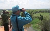 Le parc national de Tram Chim, un sanctuaire ornithologique menacé
