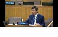 Le Vietnam exhorte les parties à Haïti à participer au dialogue