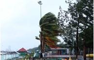 La tempête Molave frappera la côte du Centre le 28 octobre au matin