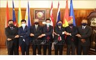 Les ambassadeurs aséaniens en Afrique du Sud saluent la préparation du Vietnam pour le 37e sommet du bloc