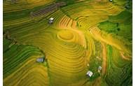 Mu Cang Chai dans le top 50 des plus belles destinations au monde