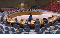 Conseil de sécurité: Le Vietnam appelle à poursuivre les aides en faveur du Liban