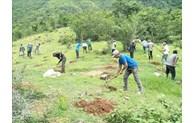 Ninh Thuan renforce le développement de l