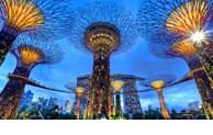 Les startups de Singapour en quête d