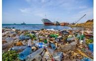 Bilan de la première année du mouvement contre les déchets plastiques