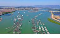 Quang Ninh crée une zone économique côtière de plus de 13.000 ha