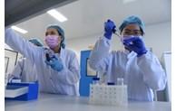 Le Vietnam testera bientôt le vaccin anti-COVID-19 sur l