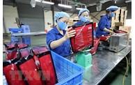 Les exportations du Vietnam vers Israël continuent de se redresser