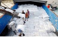 Les exportations vietnamiennes de riz aux Philippines battent un record